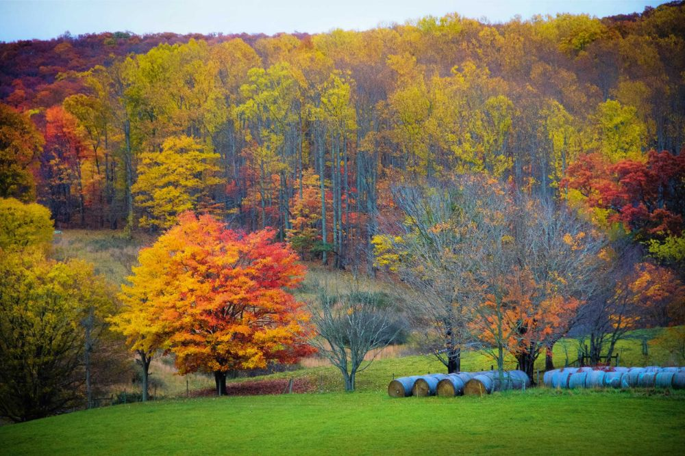 Fall in Giles County, VA